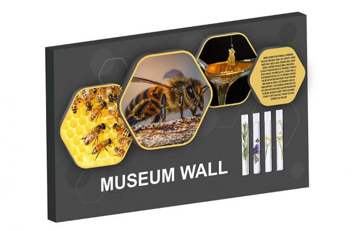 Ścianki muzealne